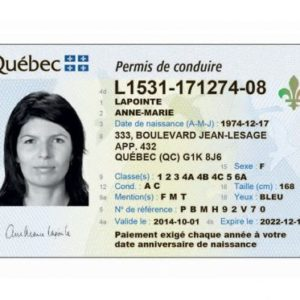 Canadian drivers license online
